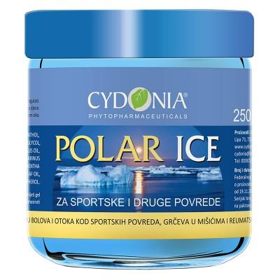 Polar Ice gel 250ml Cydonia