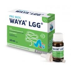 Waya LGG probiotičke kapi 10ml